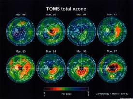 TOMS total ozone decline